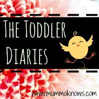 Toddler Diaries