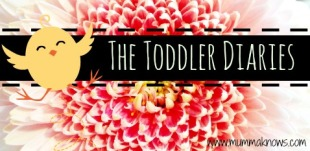 Thetoddler diaries